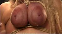 BDSM TORTURE FREE PORN VIDEOS