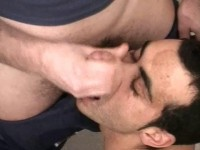 LA CATÉGORIE DES FILMS HOMOSEXUELS