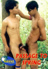 Island Caprice Asian Gays - Passage to Spring