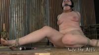 I Love Sucking Cock, Sir (2011)