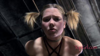 Star Begging — BDSM, Humiliation, Torture