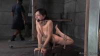 Bondage Therapy Elise Graves, Jack Hammer — BDSM, Humiliation, Torture