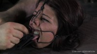 Infernalrestraints - Mar 07, 2014 - Dungeon Slave - Mia Gold