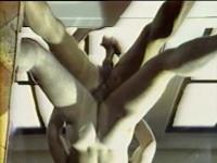 Bijou Video -  Mr. Wonderful  (1987).