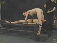 Tandem (411)