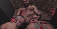 Antonio And His Friends In The Creation (spa, mirror, bdsm)