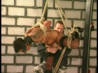 Extreme Torture #12