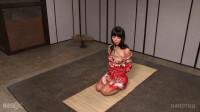 Marica Hase — BDSM, Humiliation, Torture