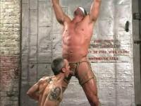 Muscle Bound – Bondo Gods 2 (2006)