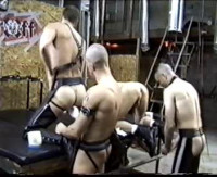 Pigs In Fist Gangbang - raw fuck, men love, cum eating, group sex