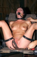 Insex – Hydrophobia, Part One (Live Feed From July 2, 2005) (922, Tough Girl)