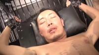 Acceed — Hentai Sarcous Toilet Akira