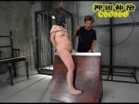 Japanese Bdsm – 4270