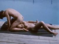 sex online mirror class (Bijou Gay Classics Fire Island Fever).