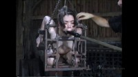 Felonie – caged.