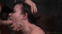 Fresh faced Amy Faye bound on sybian and throat trained by hard cock, multiple orgasms! (2015)
