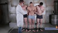 Car Thieves Part Three (2016) - gay men, gay naked, file!