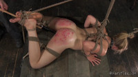 Hardtied - Oct 30, 2013 - Stay Fit Or Get Hit - Tracey Sweet - Cyd Black