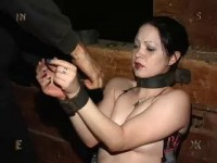 Insex - 92 Part One