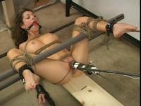 Enslaved And Satisfied
