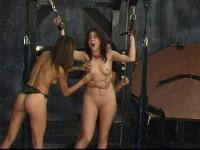 Tits Torture bd025-02