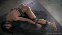 Nikki Darling 2