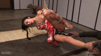 Return to Kinbaku