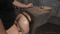 Amy Faye Bound In A Wooden Box And Anally Pounded Without Mercy!