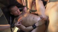 Dragon Exstasy — HD, Hardcore, Blowjob, Cumshots