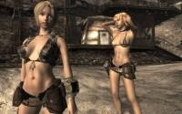 Fallout Nv Sexout Hardcore: new generation