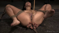 The New Girl Part Two Mia Austin Jack Hammer