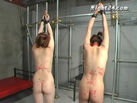 Japan in wax tied and push