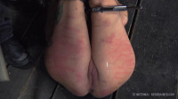 Painful Pleasure - Rain Degrey