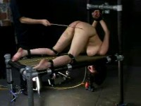 101s Endurance Live Feed RAW - InSex