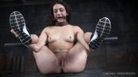 Mandy Muse — Big Girls Dont Pry (2016)