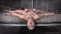 Siouxsie Q 2