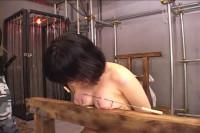 Japanese tits nailin