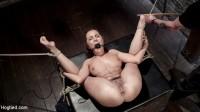 Extreme bondage, brutal torment, and intense orgasm denial.