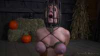 Big Breasted Blonde Darling Trained For Brutal Deepthroat