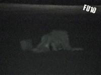 Fu10 Noche 1