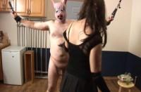 Milk The Pig