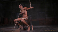 Exotic Sadie Santana Strictly Restrained