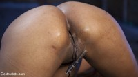 The Ultimate Electroslut: Daisy Ducati shocked & anally electrosexed!