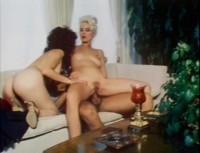 Seka's Fantasies (1981)