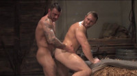 Roll in the Hay - fresh, muscle men, anal sex, stallion studios