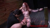 SexualDisgrace – Jan 23, 2014 – Sheena Rose's Tight Pussy Is Left Gaping
