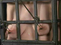 Insex – Caged (Endurance) (101's 48 Hour Live Feed Day 1) (Live Feed From Oct 24) RAW