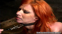 Begging For Cock — Only Pain HD
