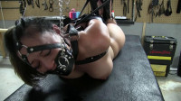Hogtied With The New Leather Straps