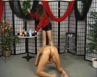 Her male anal slut